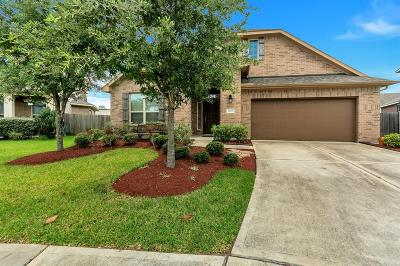 Tomball Single Family Home For Sale: 11659 Brentcross Drive