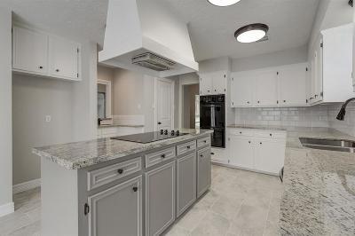 Houston Single Family Home For Sale: 12007 Nova Drive