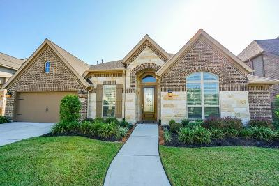 Katy Single Family Home For Sale: 2719 Carriage Hollow Lane