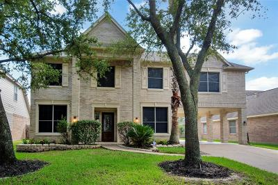 Single Family Home For Sale: 9511 Willow Crossing Drive