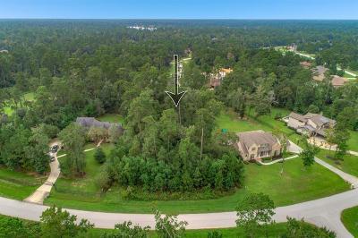 Spring Residential Lots & Land For Sale: 5210 N Ossineke Drive