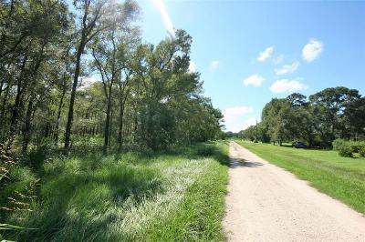 Matagorda Residential Lots & Land For Sale: Rachel