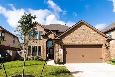 Pearland Single Family Home For Sale: 1824 Long Oak Drive