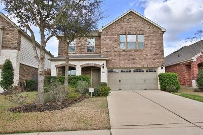 Katy Single Family Home For Sale: 6407 Burgess Heights Lane
