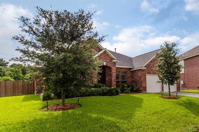 Tomball Single Family Home For Sale: 21627 Country Club Green Drive