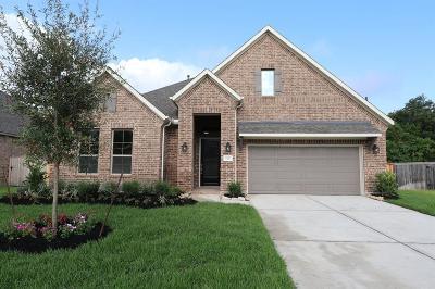 Katy Single Family Home For Sale: 5526 Mae Street