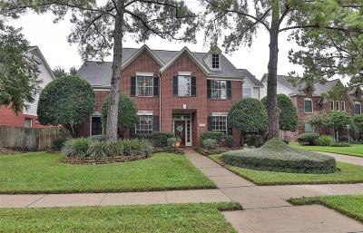 Houston Single Family Home For Sale: 7919 Ivy Trail Court