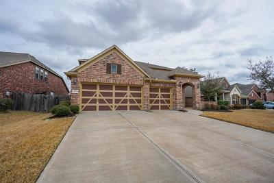 Tomball Single Family Home For Sale: 18914 Manor Spring Court