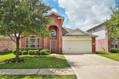 Houston Single Family Home For Sale: 10243 Mills Run Drive