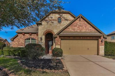 The Woodlands Single Family Home For Sale: 131 Hearthshire Circle