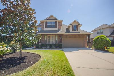 The Woodlands Single Family Home For Sale: 127 Pinto Point Place