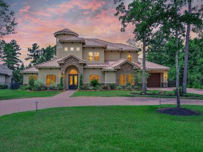 Montgomery Single Family Home For Sale: 848 Eagle Pointe