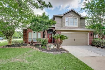 Houston Single Family Home For Sale: 7514 Mighty Falls Court