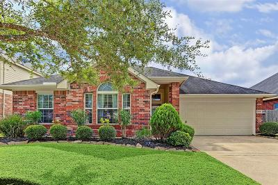 Pearland Single Family Home For Sale: 7504 Stone Arbor Lane