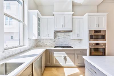 Houston Single Family Home For Sale: 4021 University Grove Street