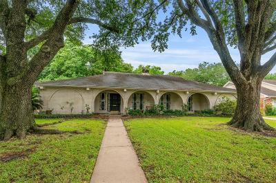 Houston Single Family Home For Sale: 6110 Burning Tree Drive