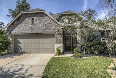 Single Family Home For Sale: 26101 Brickhill Drive