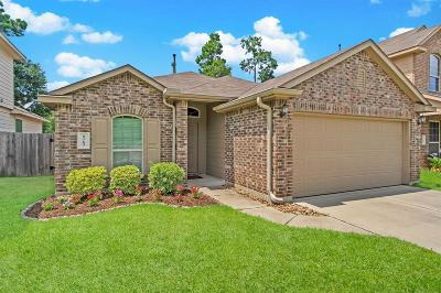 Conroe Single Family Home For Sale: 9763 Gulfstream Drive
