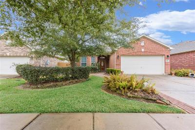 League City Single Family Home For Sale: 725 Rufina Street
