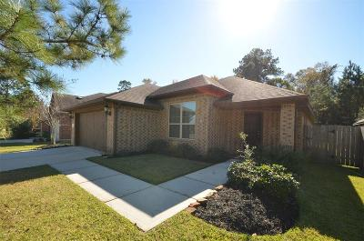 Houston Single Family Home For Sale: 12754 Bridle Springs Lane