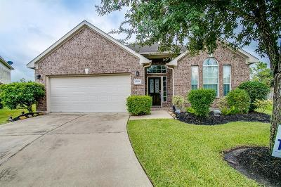 Single Family Home For Sale: 13607 Eagle Pines Court