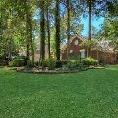 The Woodlands Single Family Home For Sale: 38 N Hidden View Circle