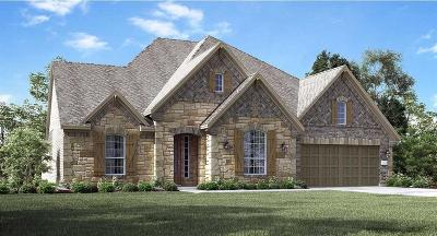 New Caney Single Family Home For Sale: 23514 Vernazza Drive