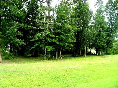 Willis Residential Lots & Land For Sale: 14660 Diamond Shores