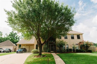 Houston Single Family Home For Sale: 15106 Chandler Hollow Lane