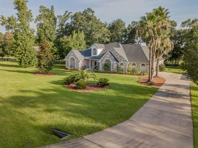 Montgomery Single Family Home For Sale: 18837 Harbor Side Boulevard