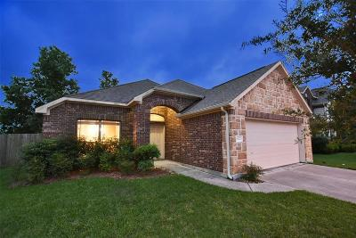 Pearland Single Family Home For Sale: 6120 Patridge Drive