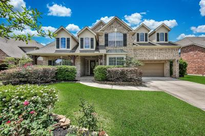The Woodlands Single Family Home For Sale: 19 Folklore Court
