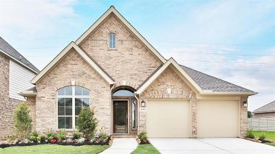 Manvel Single Family Home For Sale: 2365 Olive Forest Lane