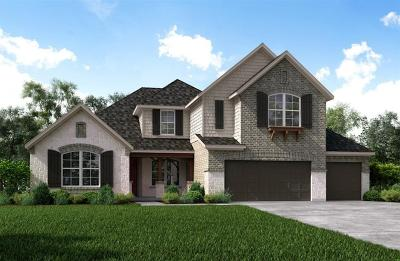 Katy Single Family Home For Sale: 29610 Pewter Run Lane