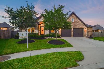 Single Family Home For Sale: 15206 Foxwood Arbor Lane