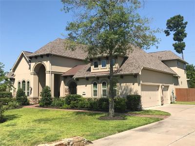 Cypress Single Family Home For Sale: 13638 Kluge Corner Lane