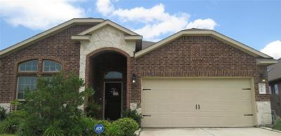 Katy Single Family Home For Sale: 3711 Daintree Park Drive