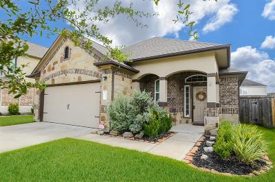 Tomball Single Family Home For Sale: 19002 Pinewood Point Lane