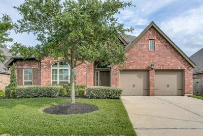 Pearland Single Family Home For Sale: 2411 Lost Bridge Lane