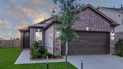 Single Family Home For Sale: 5203 Pine Forest Ridge Street