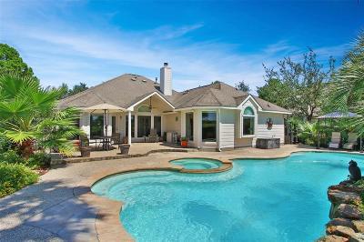 Houston Single Family Home For Sale: 16207 Zinnia Drive