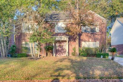 Houston Single Family Home For Sale: 4814 Natural Bridge Drive