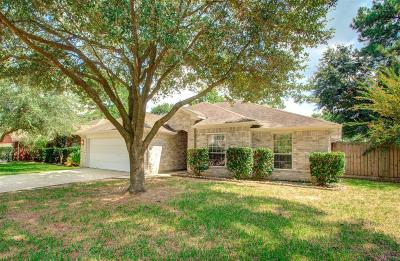 Spring Single Family Home For Sale: 2746 Autumn Springs Lane