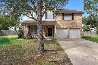 Katy Single Family Home For Sale: 6306 Tall Canyon Court