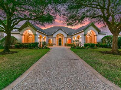 Houston Single Family Home For Sale: 13610 Winter Creek Court
