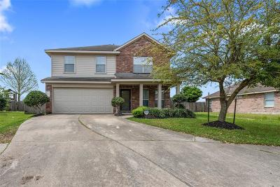 Houston Single Family Home For Sale: 1707 Adriana Lane