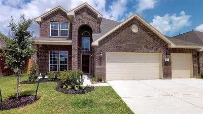 Alvin Single Family Home For Sale: 321 Burgundy Drive