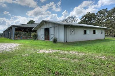 Conroe Farm & Ranch For Sale: 10897 Fm 2432 Road