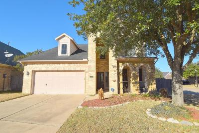 Katy Single Family Home For Sale: 3119 Willow Trace Court