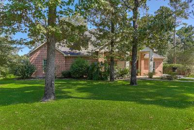 Spring Single Family Home For Sale: 4003 N Rondelet Drive